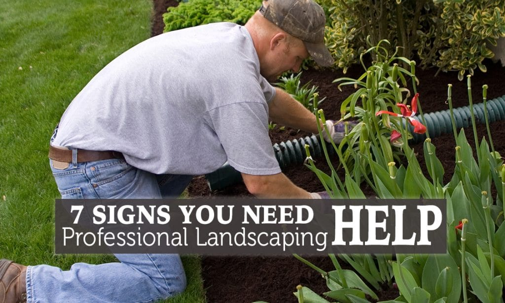 7 signs your lawn needs professional landscaping help for Professional landscaping service